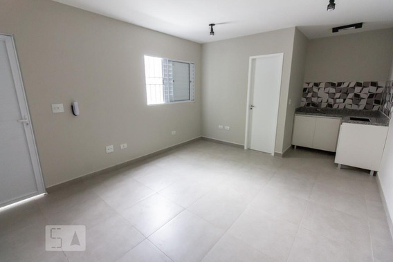 Apartamento Para Aluguel - Barra Funda, 1 Quarto, 37 - 893023545