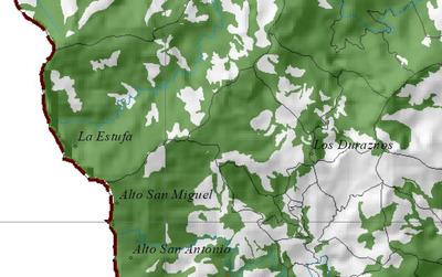 Pino Patula Y Bosques Naturales El Retiro Antioquia 157ha