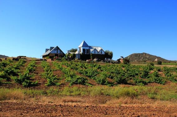 Se Vende Terreno En La Ruta Del Vino, 4 Has. En Rancho La Llave, San Antonio De La Minas, Ensenada B