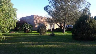 Casa Melilla, 2 Galpones, Barbacoa Y 2 Casas En Alquiler