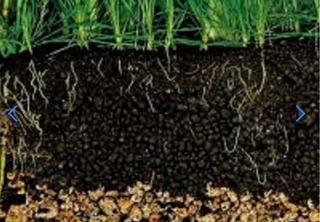 Regalado Sustrato 100% Natural Nutritivo 6 Kg Plantas