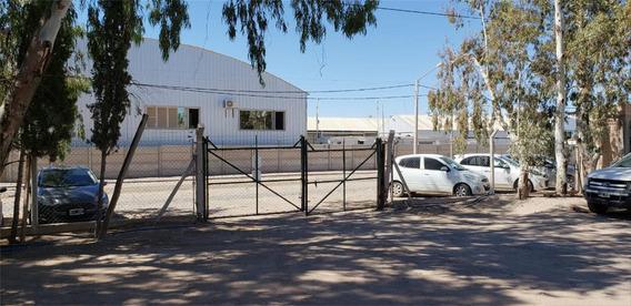 Alquilo Galpón 500 M2 -oficinas En P, Industrial Est Neuquén