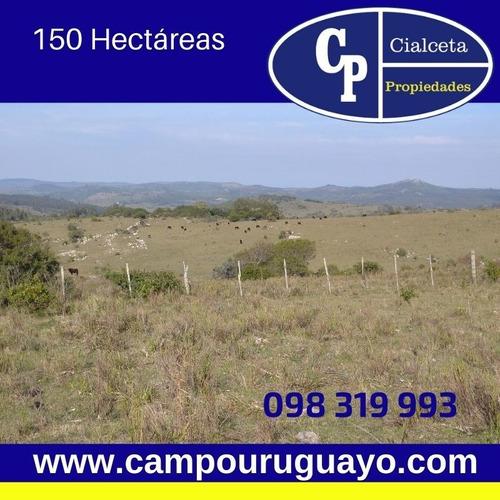 Campo Con Casona Antigua, Buena Ubicación