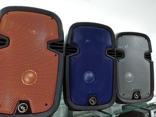 Parlante Bluetooth Grande Fm Usb Con Microfono Y Control