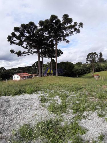 Chácara Em Rio Abaixinho  -  Araucária - 414