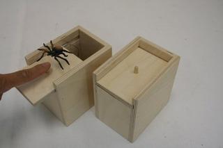 Caja De Broma Con Araña De Madera De Caja De Susto