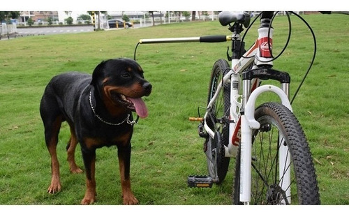 Guia Bikeleash Para Passeio Bicicleta Com Cachorro- Legítimo