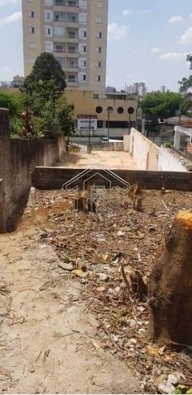Terreno Para Venda No Bairro Baeta Neves - 10176gt