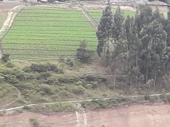 Terreno 2 Hectáreas Carchi, Los Andes