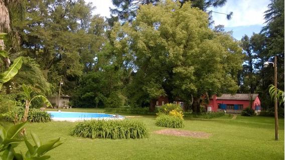 Alquiler Permanente | Casaquinta 5 Amb. En Gral Rodriguez