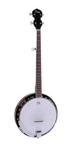 Banjo Profesional Parquer Master 5 Cuerdas Parche Remo