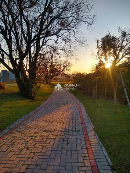 Lote De Revenda Condomínio Fechado Real Park Santa Maria - 84990