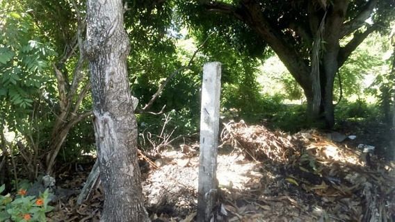 Terreno Vacacional En Venta En Playa Palenque San Cristobal
