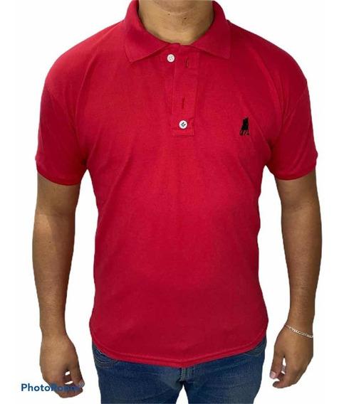 Camisa Gola Polo Kit C/ 10 Peças Promoção!! Pronto Pra Envio