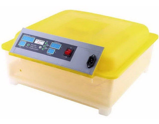 Incubadora 48 Huevos Pollos Automatico Volteador Incubar