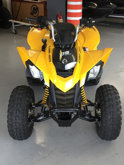 Can Am Ds 250 2011