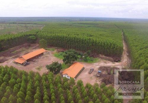Imagem 1 de 4 de Fazenda À Venda, 250000000 M² Por R$ 1.500.000.000 - Centro - Ribas Do Rio Pardo/ms - Fa0032