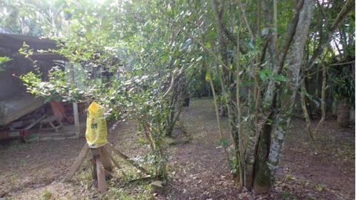 Terreno Lado Praia De 286 Mts No Gaivota - Itanhaém 2778 npc