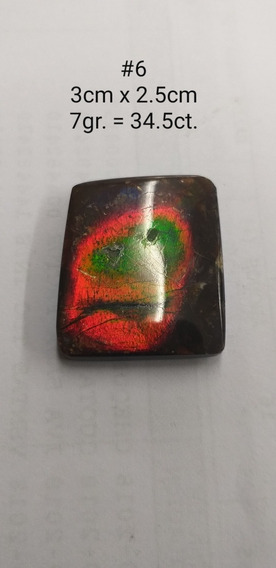 Ammolita 35ct. Piedra 100% Natural De Canada Ammolite