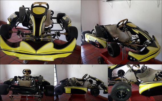 Karting Kart Mini Smart Ii Con Motor Rotax Max 125cc M 2012
