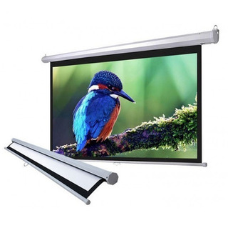 Pantalla Proyector Desplegable 100 Manual 203x152cm Aprox