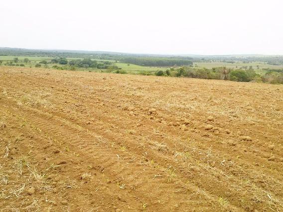 Fazenda À Venda - 500 Hectares - Região Bom Despacho (mg) - 798