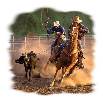 Playeras Yazbek Estampadas Transfer Animales Caballos Vaquer
