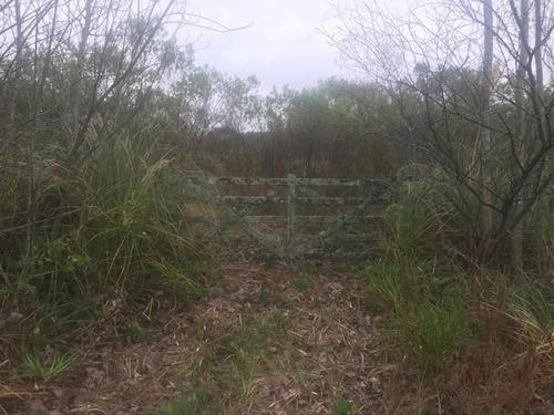Imagen 1 de 9 de Terreno En Venta En Alto Los Cardales