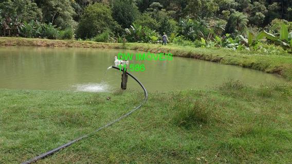 Juquia Super Sede / Piscina/ Curral / Lago / Plantação / Pasto / Troco - 04842 - 34040577