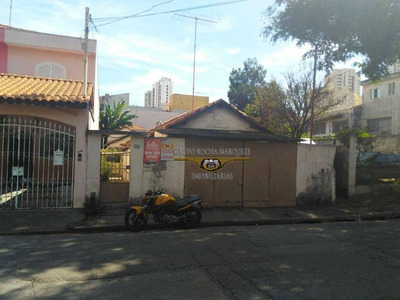Terreno Residencial À Venda, Chácara Belenzinho, São Paulo. - Te0056