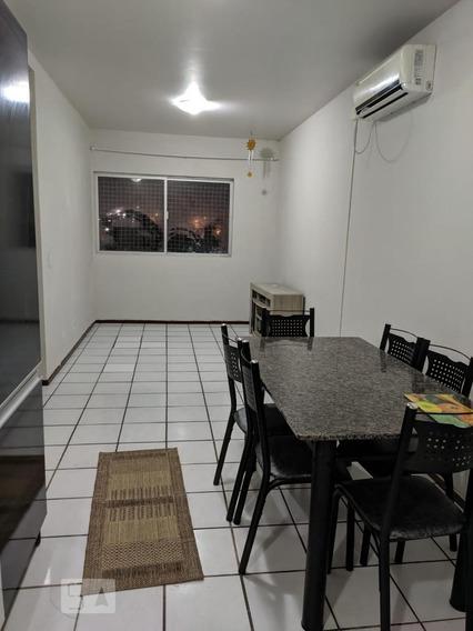 Apartamento Para Aluguel - Serraria, 2 Quartos, 52 - 893067578