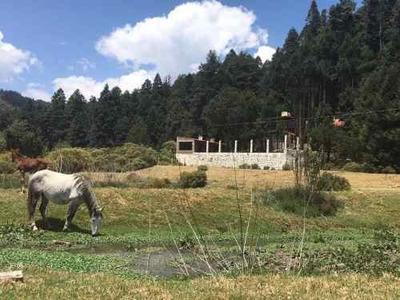 Terreno En Venta No Busques Más, Has Llegado Al Final Del Camino, Terrenos En El Bosque A Credito