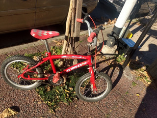 Bicicleta Para Niños Bmx Andes Rodado 14 Semi Nueva