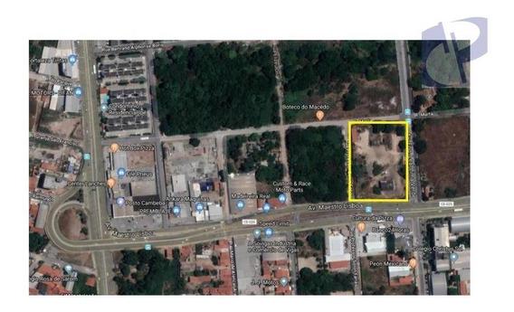 Terreno Para Alugar, 9600 M² Por R$ 22.000,00/mês - Sapiranga - Fortaleza/ce - Te0422