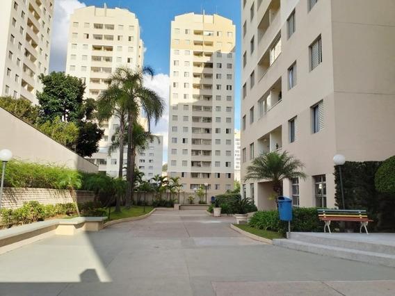 Apartamento - Ap01142 - 34211565