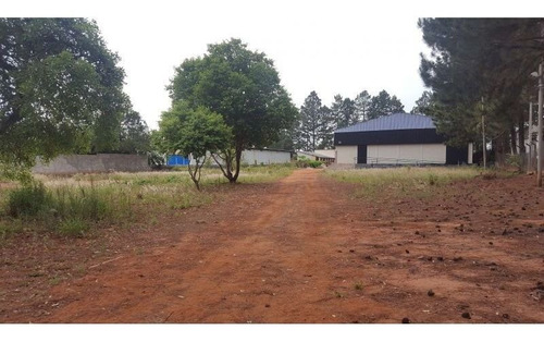Barracão/galpão Para Locação - Distrito Industrial Domingos Biancardi, Bauru-sp - 3251