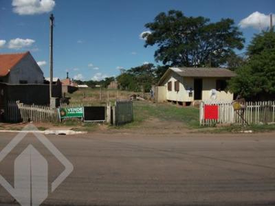 Terreno - Mato Grande - Ref: 51380 - V-51380