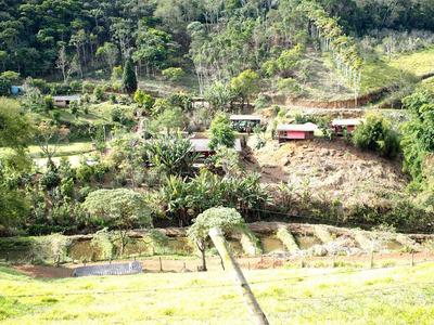 Rural Para Venda, 12 Dormitórios, Vale Das Videiras - Paty Do Alferes - 1644