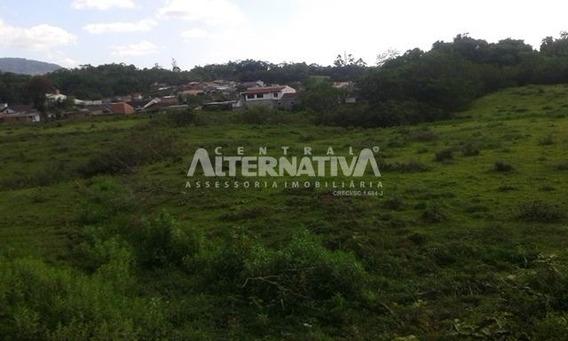 Terreno Com Grande Área, Em Zona Urbana De Indaial - 8238