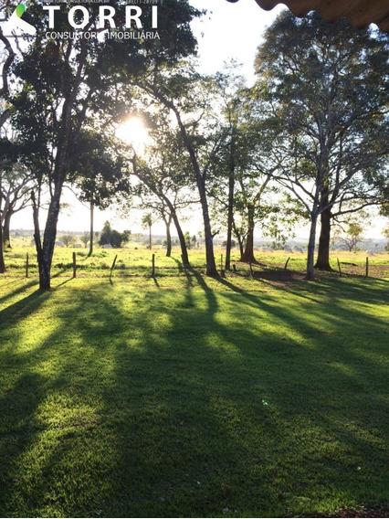 Fazenda A Venda Em Bonito - Fa00021 - 67645900