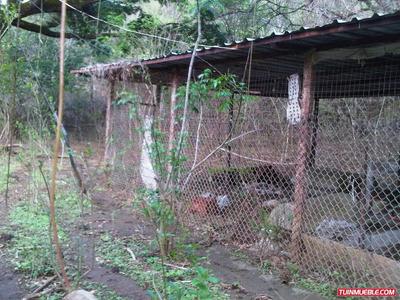 Haciendas - Fincas En Venta 04124520979
