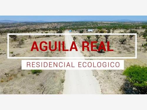 Imagen 1 de 10 de Terreno En Venta Carretera San Miguel Allende A Guanajuato