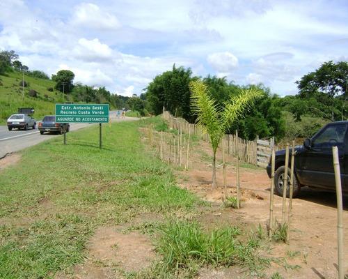 Imagem 1 de 9 de Sítio À Venda Em Jardim Monte Verde - Si000914
