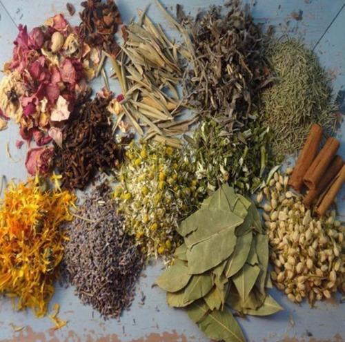 Ervas Naturais Manjericão - Arruda - Guiné - Capim Cidreira
