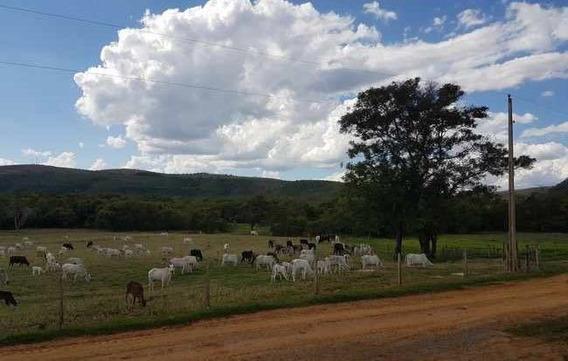 Fazenda Com 739 Ha , Na Região De Sete Lagoas , Município De Paraopeba, 100 % Mecanizável , 01 Hora De Belo Horizonte, Porteira Fechada. - 155