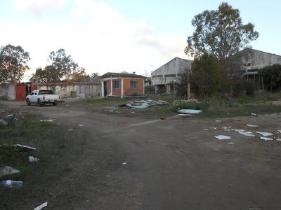 Gran Terreno De 3.749 M2 Con Galpón Y Casa