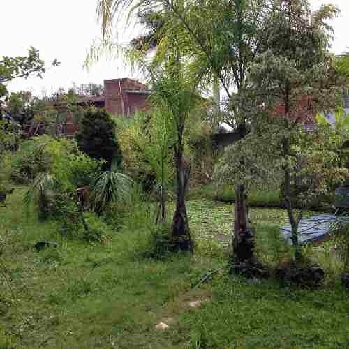 Terreno En Las Fincas Jiutepec