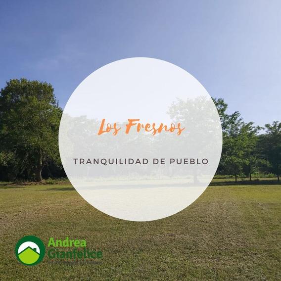 Los Fresnos Ii Loteo En Salvador Maria Lobos, Financiación 6 Cuotas