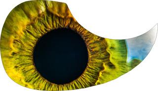 Escudo Palheteira Resinada Violão Aço Wonder Eye