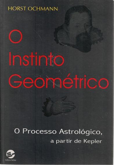 C538 - O Instituto Geométrico - Horst Ochmann